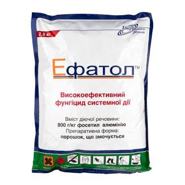 efatol-2kg-1-378×378[1]